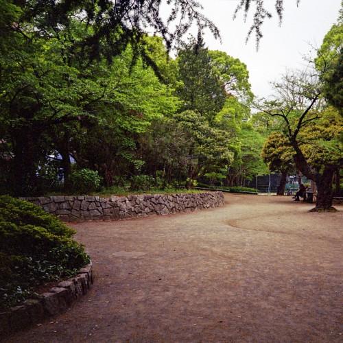 松戸駅すぐそばにある松戸中央公園