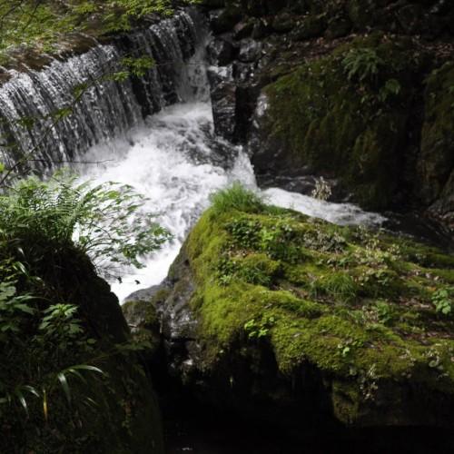 貴船川の小さな滝のような流れ