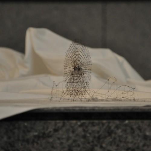 横浜トリエンナーレ2011の展示作品 髪の毛