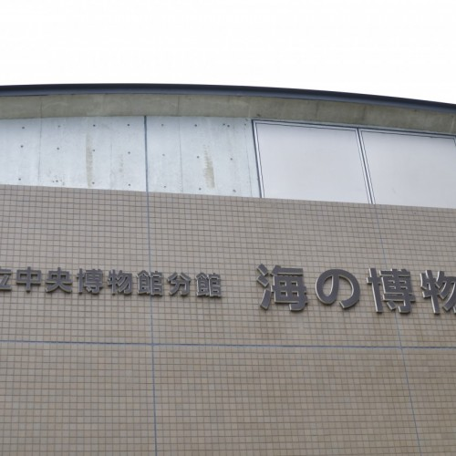 千葉県立中央博物館分館 海の博物館 外観