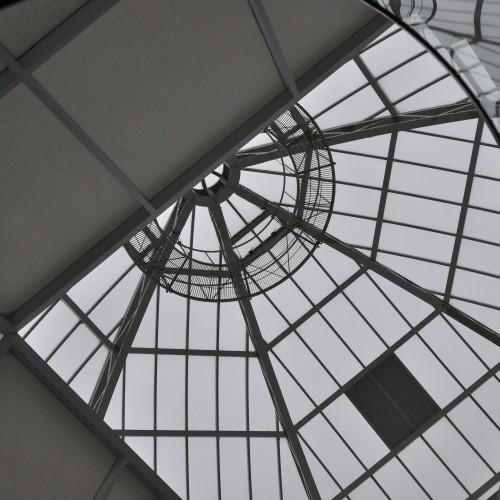 葛西臨海水族園のドーム下から見る