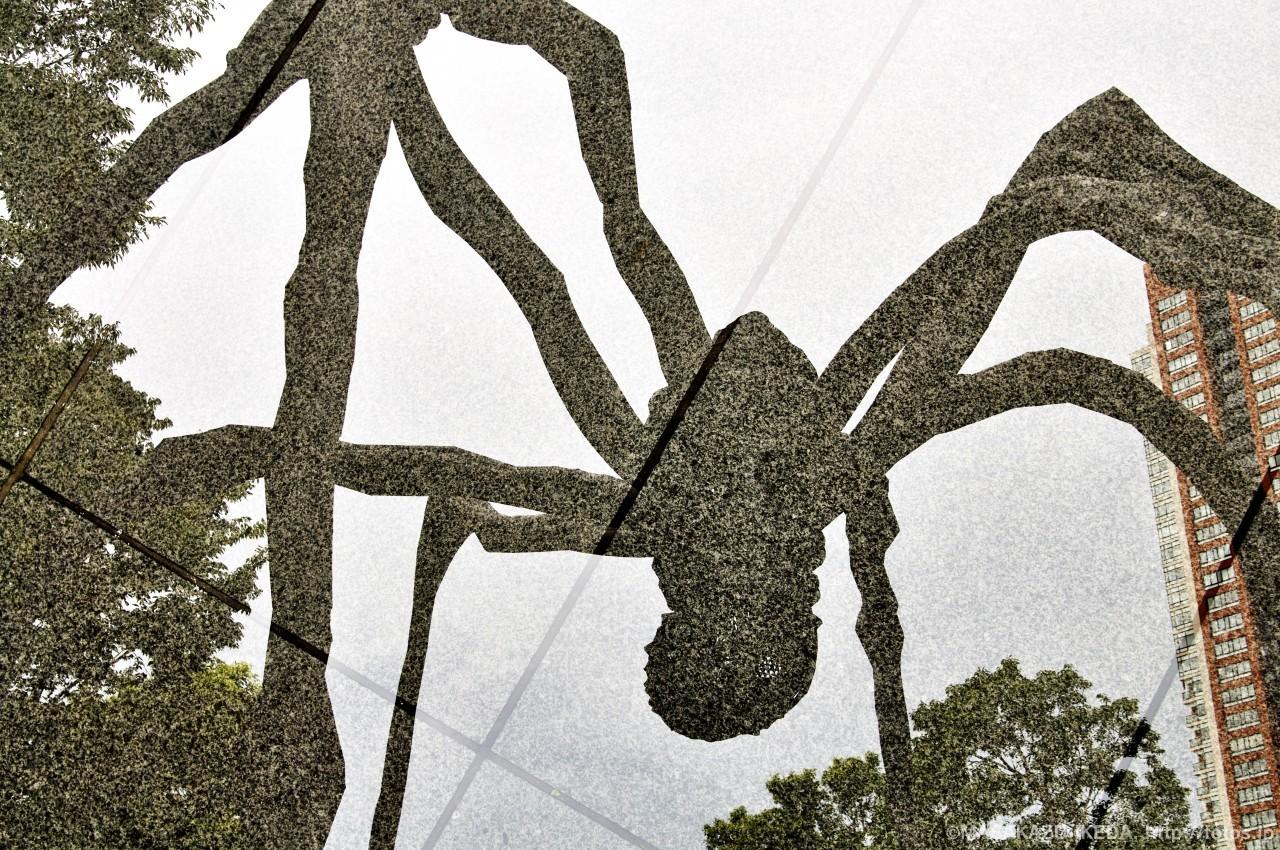 六本木ヒルズ巨大クモ・ママンのオブジェ