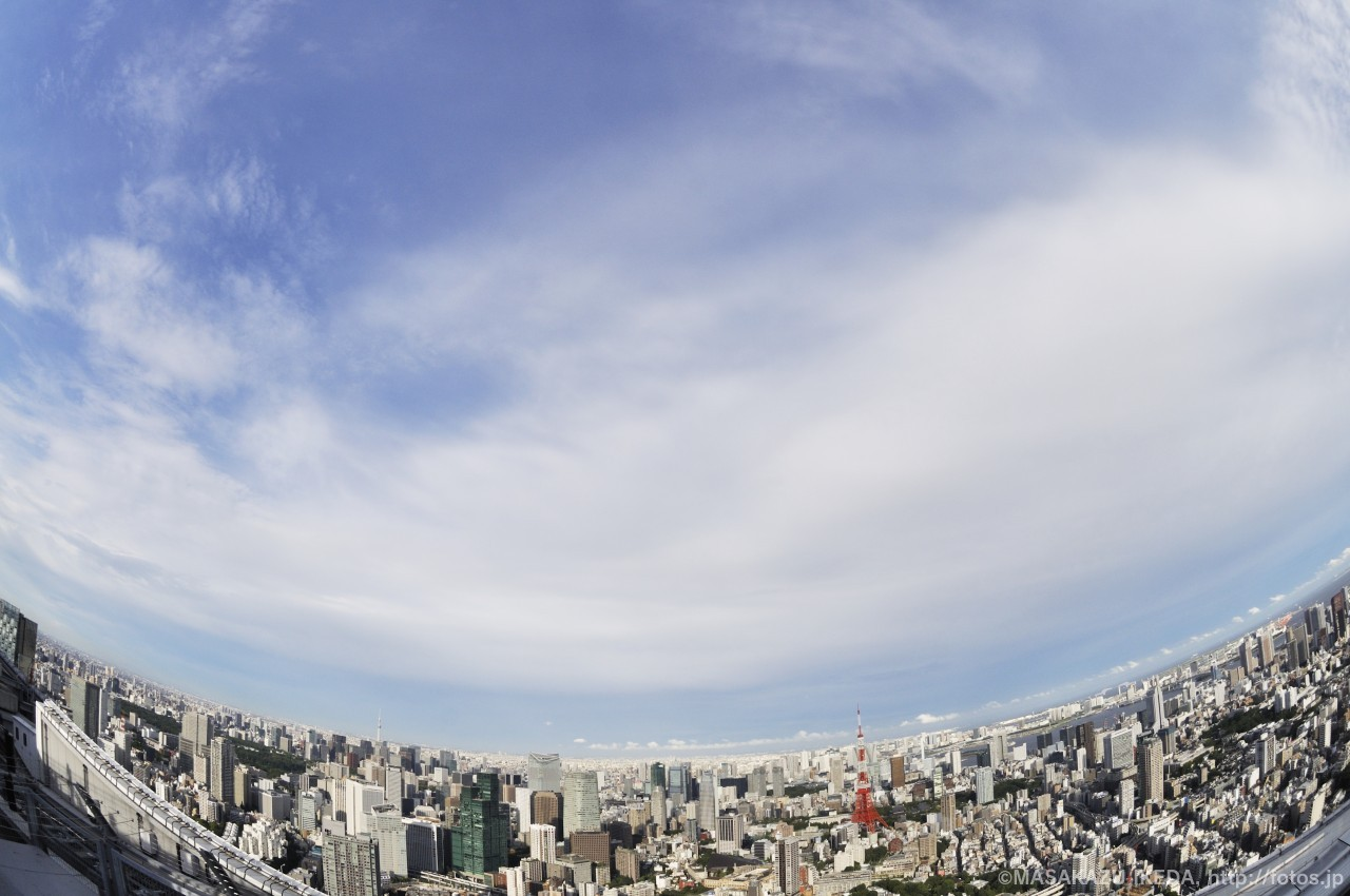 スカイデッキから東京タワー側の眺め