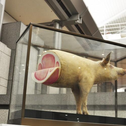 吉村益信《豚; pig'Lib;》