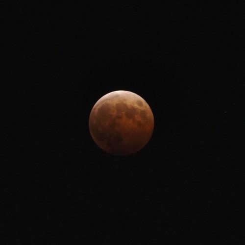 皆既月食中の月 ISO200・F8・1.3秒