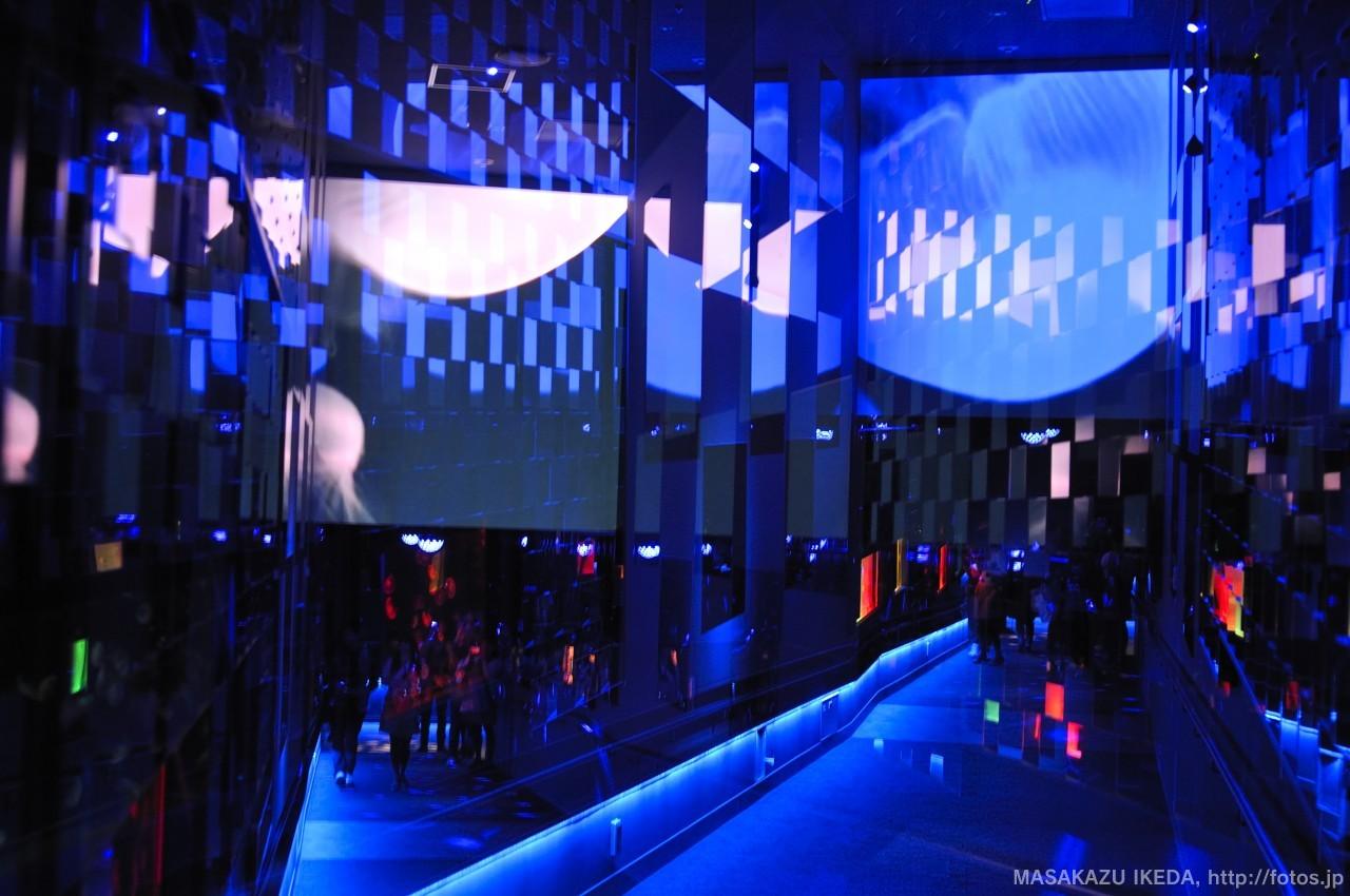 クラゲ万華鏡トンネル 多重露光写真