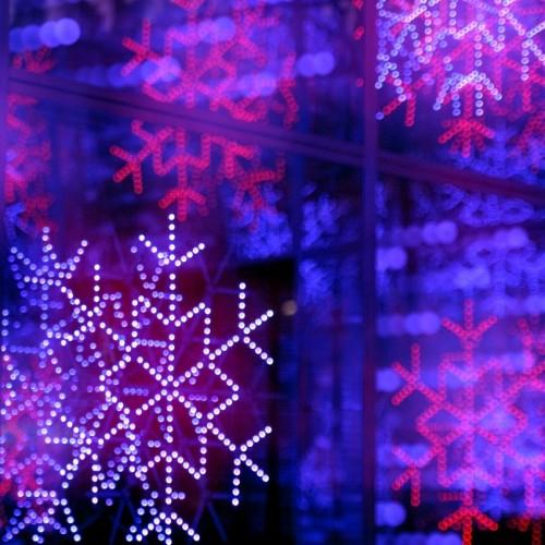 東京ドームシティ イルミネーション 雪の結晶