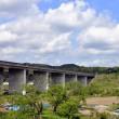 JR常磐線特急ときわ車窓から見た景色