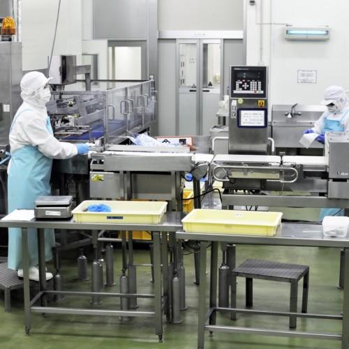 めんたいパーク工場ギャラリー内作業現場
