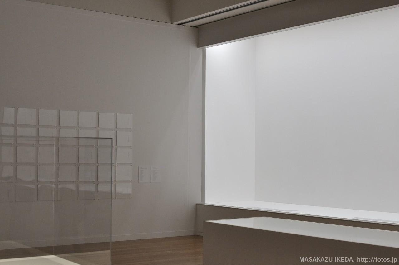 藤井光 氏の作品