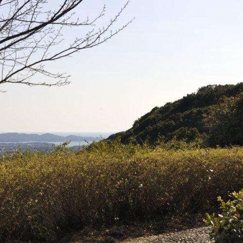 横山展望台からの景色