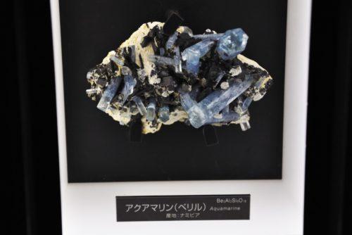 名古屋市科学館:アクアマリン(ベリル)