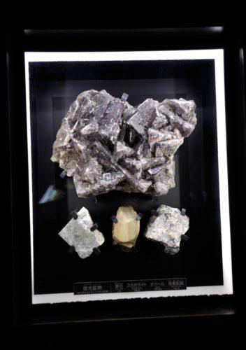 名古屋市科学館:蛍光鉱物(蛍石・スカポライト・オパール・珪亜鉛鉱)