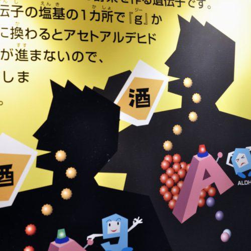 名古屋市科学館:酒の分解